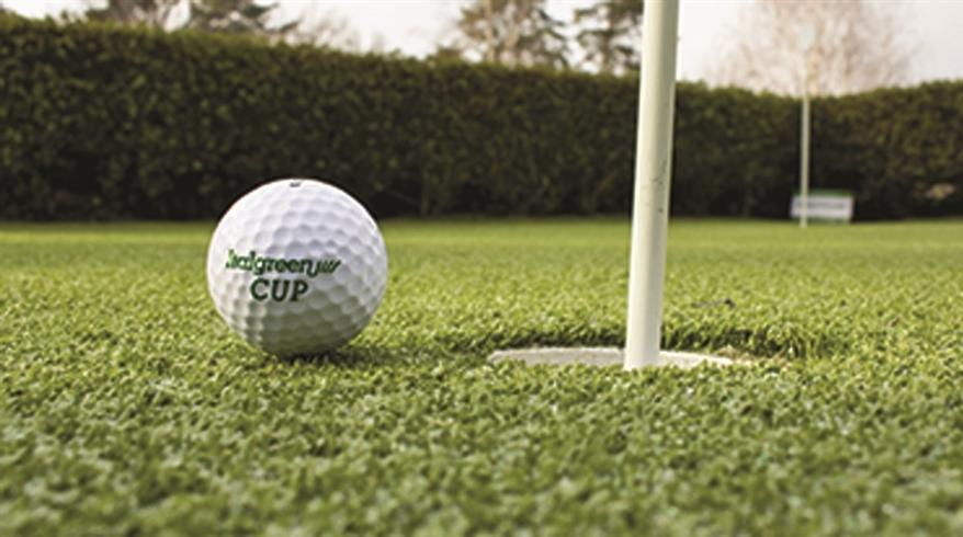 grama sintética golfe le robinie 5