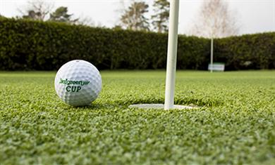 Grama sintética para campos de golfe